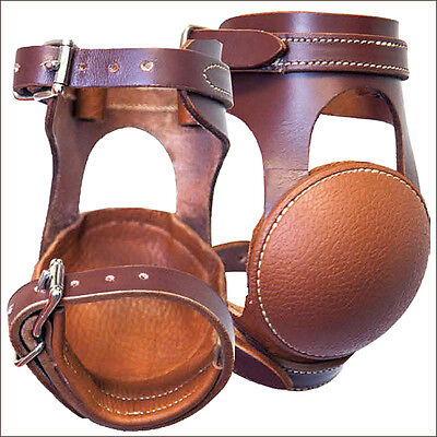 Cactus Ropes Western Relentless Leather Horse Leg Skid Boot With Buckle