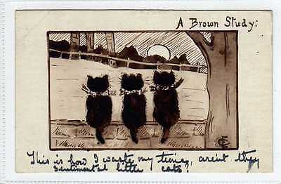 (Lb7281-438) A Brown Study, Kittens 1909 Used G-VG