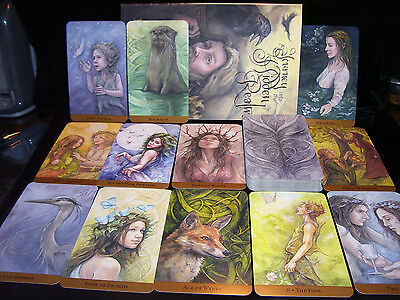 Sealed & Brand New! Tarot Of The Hidden Realm Cards & Book Shamanism Faery