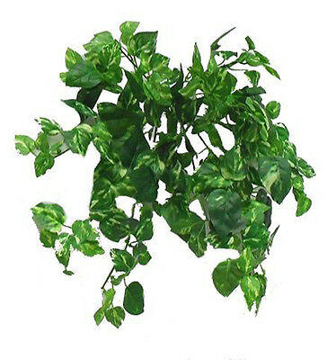 Variegated POTHOS BUSH ~ Mini Greenery Silk Wedding Flowers Centerpieces Decor