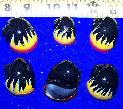 4 Hermit Crab Snail Shells Painted Turbo Flames Design Item # Phc16-4