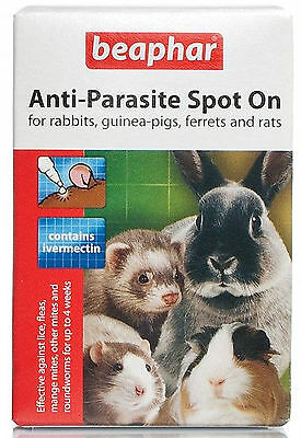 Beaphar Anti-Parasite Spot On Large - Rabbits & Guinea Pigs - 2 Pack
