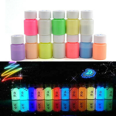 20g/Box Party Craft DIY Bright Glow in the Dark Acrylic Luminous Paint Pigment