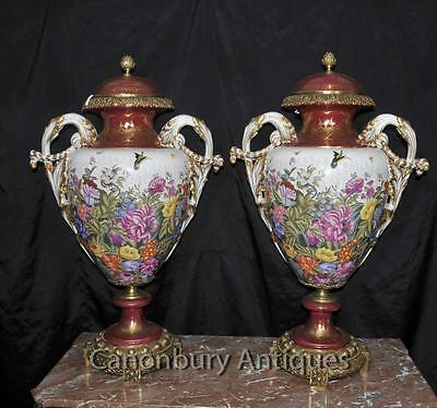 Pair Big Sevres Porcelain Urns Tropical Floral Spray French Vases