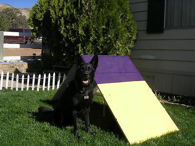 Dog Agility Equipment Mini A-Frame / A Frame