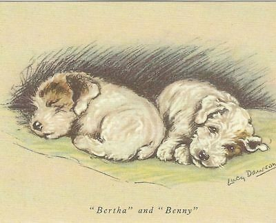 Sealyham Terrier Puppy - MATTED Dog Print - Lucy Dawson