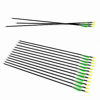 "12 pcs Hunting Archery Fiberglass Arrows Field Point Target Practise 28"" 30"" 32"""