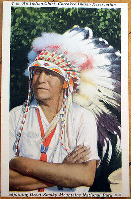 1940s Native American Linen Postcard: Indian Chief - Cherokee Reservation