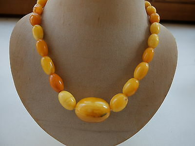 Bernsteinkette - Butterscotch -  Amber Kette - Necklace 老琥珀