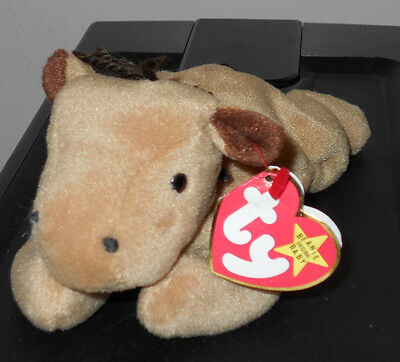 CT* Ty Beanie Baby ~ DERBY the Horse without Star on Forehead ~ MWCT