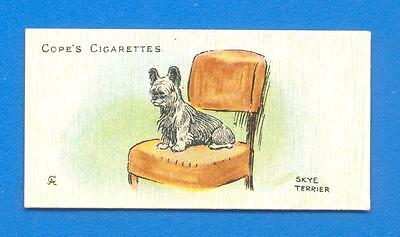 DOGS OF THE WORLD.No.17.SKYE TERRIER.CIGARETTE CARD ISSUED BY COPES IN 1912