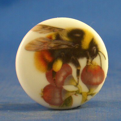 """1"""" Porcelain China Button --  Bee On Rose Hips"""