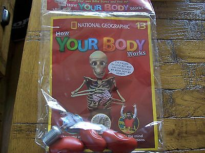National Geographic How Your Body Works #13