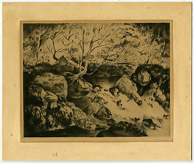 Antique Print-FOREST LANDSCAPE-RIVER RAPIDS-STONE-Melis-ca. 1940
