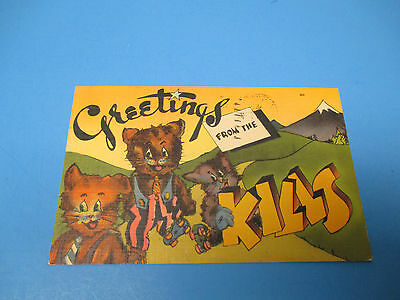 Greetings From The Kills 1943  Postmarked Vintage Color Postcard PC28