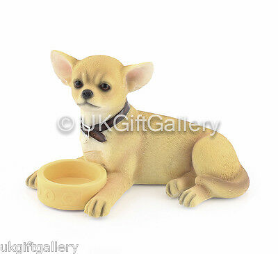 CHIHUAHUA Pup With Bowl Dog Ornament Figurine by Leonardo NEW & BOXED
