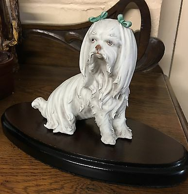 Vintage signed Art Bisque Italy Sculpture Maltese TERRIER ,Havanese Dog figure