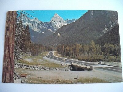 Rogers Pass Highway Canadian Rockies Mt. Sir Donald Bc Canada Postcard