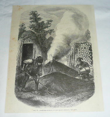 1877 magazine engraving ~ CHARCOAL-BURNING IN THE HARTZ