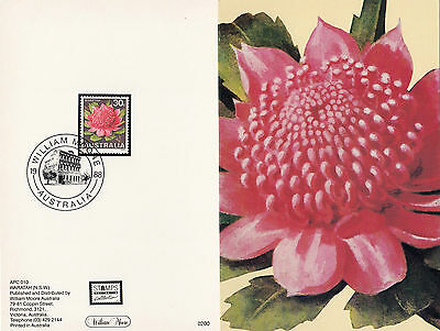 Stamp Australia 30c flower from 1968 series on back of William Moore APC card