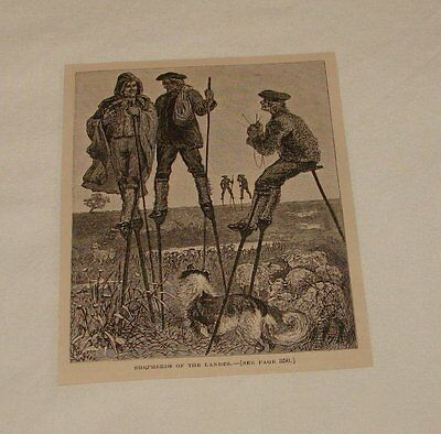 1879 magazine engraving ~ SHEPHERDS OF THE LANDES, France