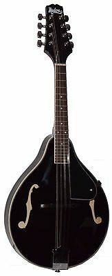 "NEW MADERA M-200 ""A"" STYLE MANDOLIN MIDNIGHT BLACK PACKAGE w/ FREE GIG BAG"