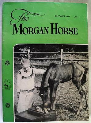 The Morgan Horse Magazine Publication December 1955 Vintage Club News