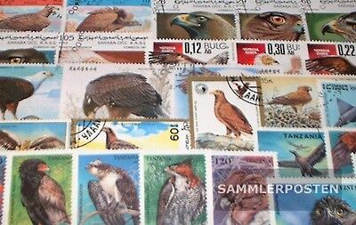 Thematics 50 different raptors stamps