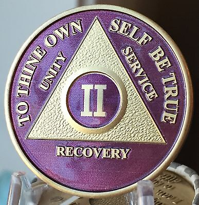 2 Year AA Medallion Purple Gold Plated Alcoholics Anonymous Sobriety Coin Chip