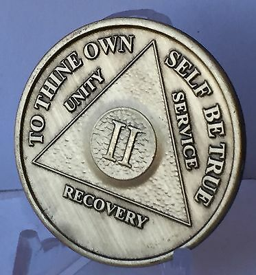 Alcoholics Anonymous 2 Year Recovery Coin Chip Medallion Medal Token AA Bronze