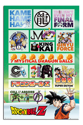 Dragon Ball Z Infographic Poster New - Maxi Size 36 x 24 Inch