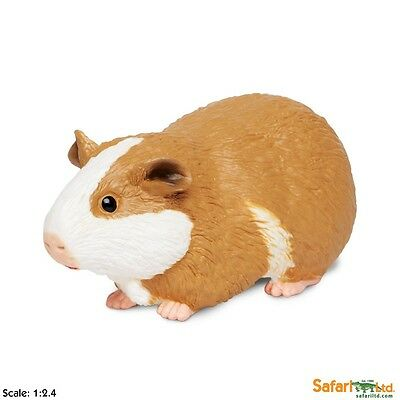 GUINEA PIG by Safari Ltd/toy/replica/269629