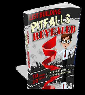 10 Steps To List Building Success, Internet Email Marketing Pitfalls Shown (CD)