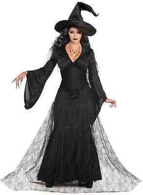 a1125e894 Black Mist Witch Wicked Sorceress Gothic Fancy Dress Up Halloween Adult  Costume