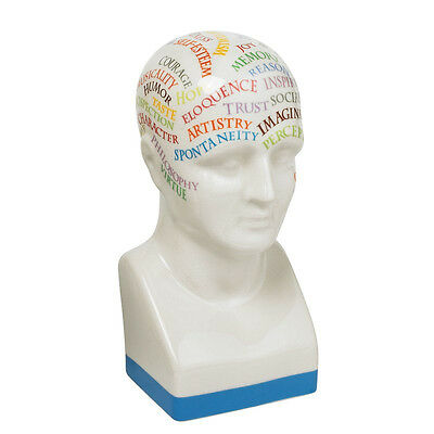 Phrenologie Kopf Charakter Porzellan Authentic Models Phrenology