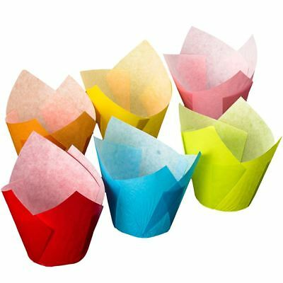 Multi Colour Tulip Wraps x24 Cupcake Cases Baking Cups Cake Decorating Party