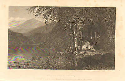 Deer, Lakeside, At Home And At Rest, Family, Vintage 1871 Antique Art Print