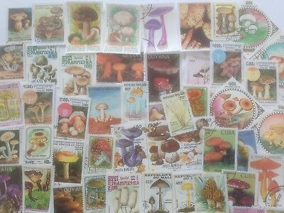300 Different Mushrooms/Fungi on Stamps Collection