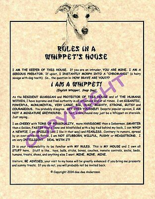 Rules In A Whippet's House