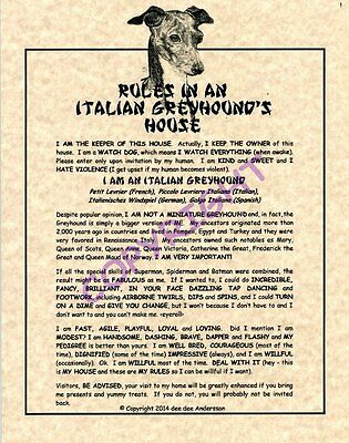 Rules In An Italian Greyhound's House