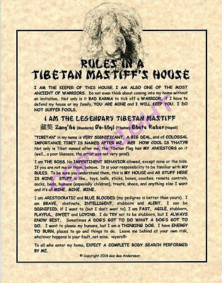 Rules In A Tibetan Mastiff's House