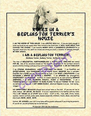 Rules In A Bedlington Terrier's House