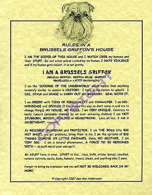 Rules In A Brussels Griffon's House