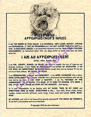 Rules In An Affenpinscher's House