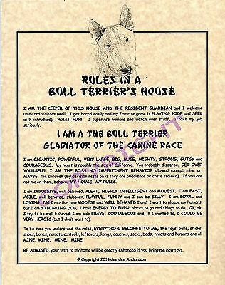 Rules In A Bull Terrier's House