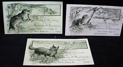 3 Victorian Trade Card Worden General Store Lynn MA