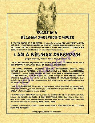 Rules In A Belgian Sheepdog's House