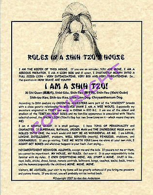 Rules In A Shih Tzu's House