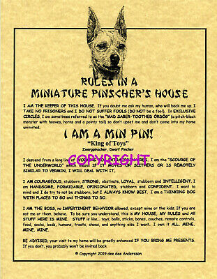 Rules In A Miniature Pinscher's House