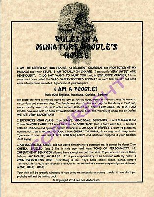 Rules In A Miniature Poodle's House